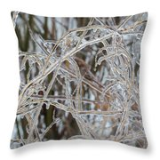 Toronto Ice Storm 2013 - Pale Frozen Grasses  Throw Pillow