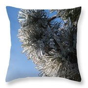 Toronto Ice Storm 2013 - Pine Needle Flowers In The Sky Throw Pillow