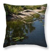 Toronto Islands Slow Cruising   Throw Pillow