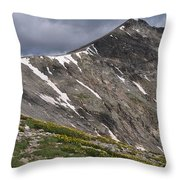Torreys Peak Throw Pillow by Aaron Spong