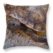 Tortoise By Nature Throw Pillow