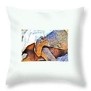 Tortoise Gouache Throw Pillow