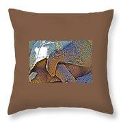 Tortoise One Throw Pillow