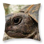 Tortoise Portrait In Macro Throw Pillow