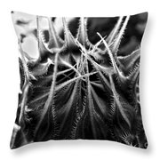 Total Eclipse Of The Sunflower - Bw Throw Pillow