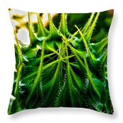 Total Eclipse Of The Sunflower Throw Pillow