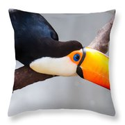 Toucan Ramphastos Toco Sitting On Tree Branch In Tropical Fore Throw Pillow