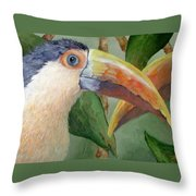 Toucans Throw Pillow