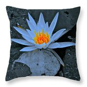 Touch Of Gold In Lily Throw Pillow