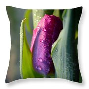 Touched From The Light Throw Pillow