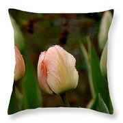 Touch Of Peach Throw Pillow
