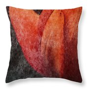 Touch Of Spring Throw Pillow