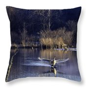 Touchdown Trumpeter Swan Throw Pillow