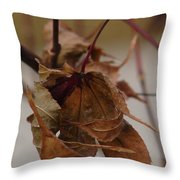 Touched By Jack Frost Throw Pillow