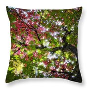 Touches Of Autumn  Throw Pillow