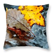 Touching In Time Throw Pillow