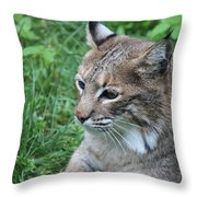 Tough Cat Throw Pillow