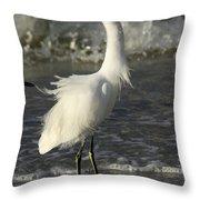 Tousled Egret Throw Pillow