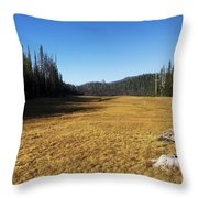 Towards Hand Lake And Mt Jefferson Throw Pillow