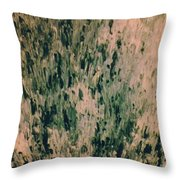 Towards Self Realization Throw Pillow