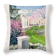 Tower Hill Throw Pillow
