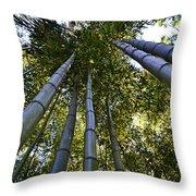Towering Bamboo Throw Pillow
