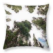 Towering Pine Trees Throw Pillow