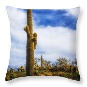 Towering Saguaro Throw Pillow