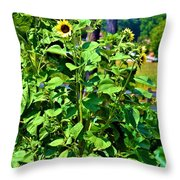 Towering Sunflowers Throw Pillow