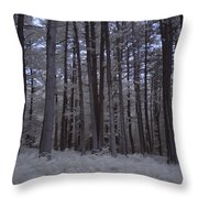Towering Trees Over Ferns In Blue Throw Pillow