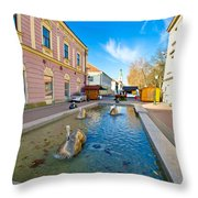 Town Of Bjelovar Square Fountain Throw Pillow