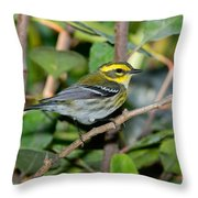 Townsends Warbler In Tree Throw Pillow