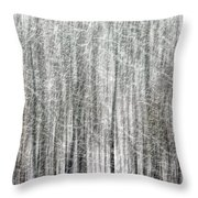 C And O Towpath Blizzard Throw Pillow