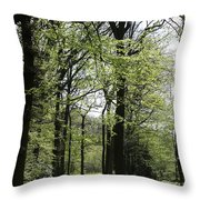 Track Trough The Woods Throw Pillow