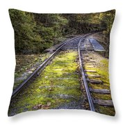 Tracks Along The River Throw Pillow