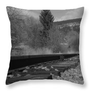 Tracks And Trees Throw Pillow