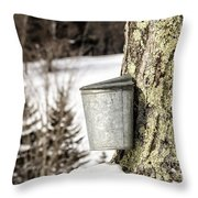 Traditional Sap Bucket On Maple Tree In Vermont Throw Pillow