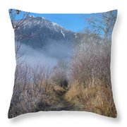 Trail At Grant Narrows Regional Park Throw Pillow