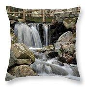 Trail Bridge Throw Pillow