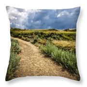 Trail In Badlands In Alberta Canada Throw Pillow