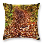Trail In Fall Forest Throw Pillow