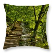Trail In The Forest Throw Pillow
