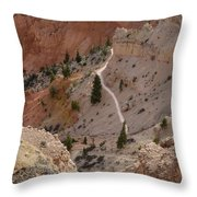 Trail Into The Past Throw Pillow