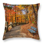 Trail Of Gold Throw Pillow