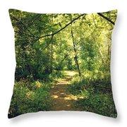 Trail Of Hope II Throw Pillow