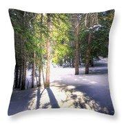 Trail To Bear Lake 4490 Throw Pillow