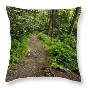 Trail To Chimney Tops - D005669a Throw Pillow