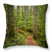 trail to Lower Lewis Falls Throw Pillow