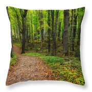 Trail To Miners Falls Throw Pillow