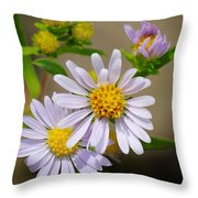 Trail Wildflowers Throw Pillow